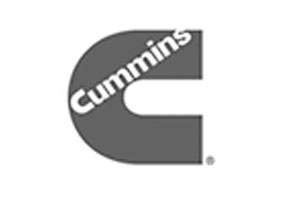 CUMMINS_INDIA_LTD