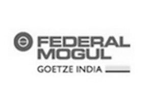 FEDERAL_MOGUL_GOETZ_INDIA_LTD