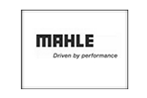 MAHLE_ENGINE_COMPONENTS_INDIA_PVT_LTD_