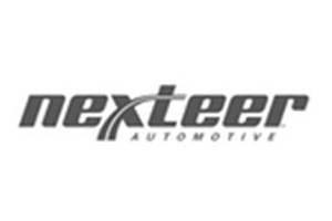 NEXTEER_AUTOMOTIVE_INDIA_PVT_LTD